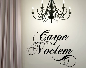 "Carpe Noctem - A Latin phrase meaning ""Seize the Night"""