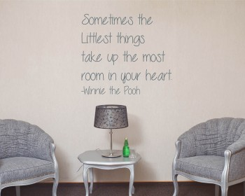 Sometimes the Littest Things Quotes Wall Decal Love Vinyl Art Stickers